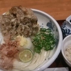 Udon Dining 悠讃の写真